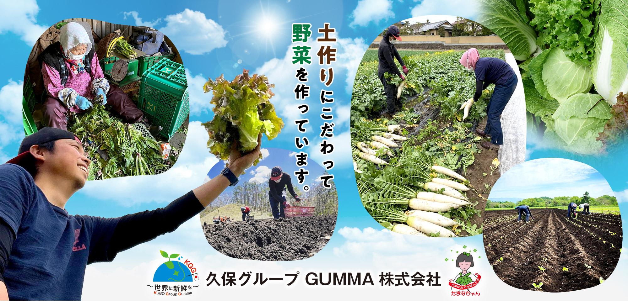土作りにこだわって、野菜を作っています。